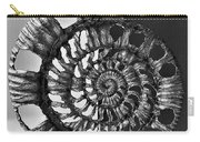 Metal Sea Shell Carry-all Pouch