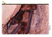 Mexican Free-tailed Bats Carry-all Pouch