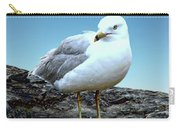 Moewe Seagull Carry-all Pouch