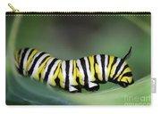 Monarch Caterpillar Macro Carry-all Pouch