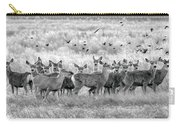 Mule Deer Black And White 01 Carry-all Pouch by Rob Graham
