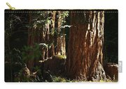 New Growth Redwoods Carry-all Pouch