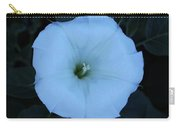 New Mexico Flower Carry-all Pouch