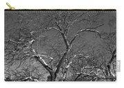 Niagara Falls Winter Textures Carry-all Pouch