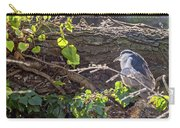 Night Heron At The Palace Revisited Carry-all Pouch by Kate Brown
