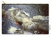 Not Your Average Swimming Hole 3  Carry-all Pouch