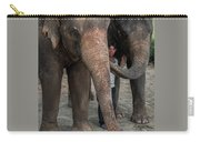 One Man, Two Elephants Carry-all Pouch