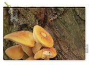 Orange Funghi Carry-all Pouch by Scott Lyons