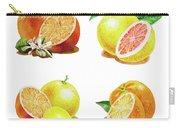 Orange Grapefruit Lemon Watercolor Fruit Illustration Carry-all Pouch
