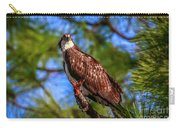 Osprey Lookin' At Ya Carry-all Pouch by Tom Claud
