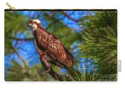 Osprey On Limb Carry-all Pouch by Tom Claud