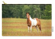 Paint Horse In Meadow Carry-all Pouch