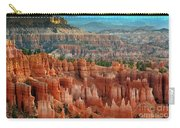 Panorama Bryce Canyon  Carry-all Pouch
