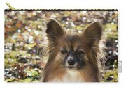 Papillon Sitting In Leaves Carry-all Pouch