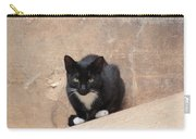 Pharaoh Cat Carry-all Pouch