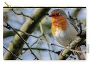 Plump Robin Carry-all Pouch by Scott Lyons