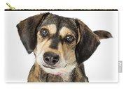 Portrait Cute Medium Size Crossbreed Dog Carry-all Pouch