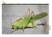 Portrait Of A Great Green Bush-cricket Sitting On The Pavement Carry-all Pouch