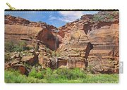 Rain Waterfall Off The Standstone Carry-all Pouch