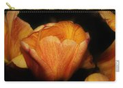 Red Orange Yellow Tulip Carry-all Pouch