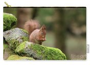 Red Squirrel Sciurus Vulgaris Eating A Seed On A Stone Wall Carry-all Pouch