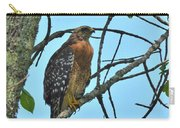 Red Shouldered Hawk Panorama Carry-all Pouch