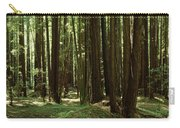 Redwood Trees Armstrong Redwoods St Carry-all Pouch