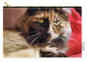 Regal Feline Carry-all Pouch