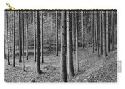 Road Passing Through Forest, Stuttgart Carry-all Pouch
