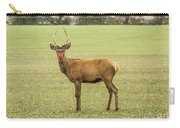Rudolph The Red Nosed Reindeer Carry-all Pouch