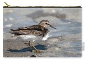 Sandpiper At Tidal Pool Carry-all Pouch by William Selander