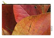Sassafras Autumn Carry-all Pouch