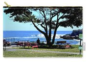 Ship Cove Park Carry-all Pouch