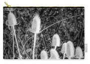 Silver Thistle Seed Pods Carry-all Pouch