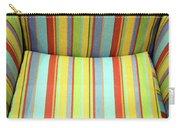 Sitting On Stripes Carry-all Pouch