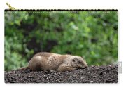 Sleeping Prairie Dog Carry-all Pouch by Scott Lyons