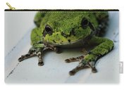 Smiling Frog Carry-all Pouch