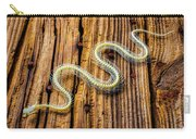 Snake Skeleton On Wooden Boards Carry-all Pouch