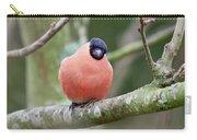 So. Bullfinch Carry-all Pouch