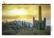 Sonoran Sunrise Carry-all Pouch