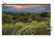 Sonoran Valley Sunset V1922 Carry-all Pouch by Mark Myhaver