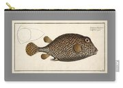 Spotted Trunk Fish  Carry-all Pouch