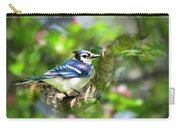 Spring Blue Jay Carry-all Pouch