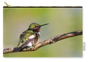 Spring Green Hummingbird Carry-all Pouch