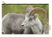 Stone's Sheep Ram Carry-all Pouch