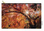 Sun Peaking Through The Autumn Colors  Carry-all Pouch