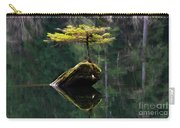 The Little Tree On Fairy Lake 5 Carry-all Pouch