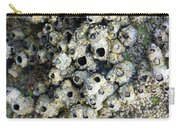 Tidal Pool 5 Carry-all Pouch by Megan Dirsa-DuBois