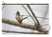 Titmouse Pull-ups Carry-all Pouch