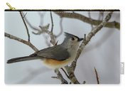Titmouse Winter Morning Cutie  Carry-all Pouch